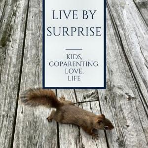 Liv By Surprise